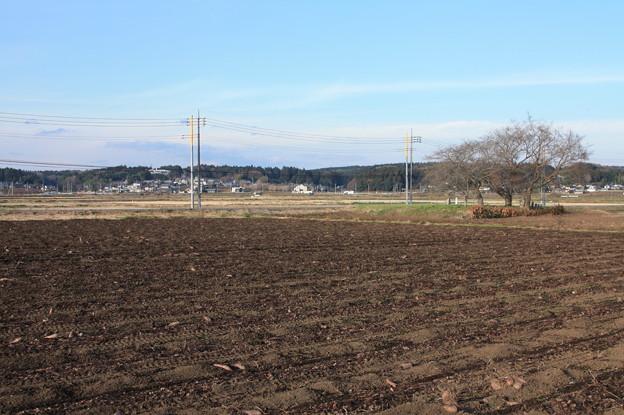 冬の田園風景