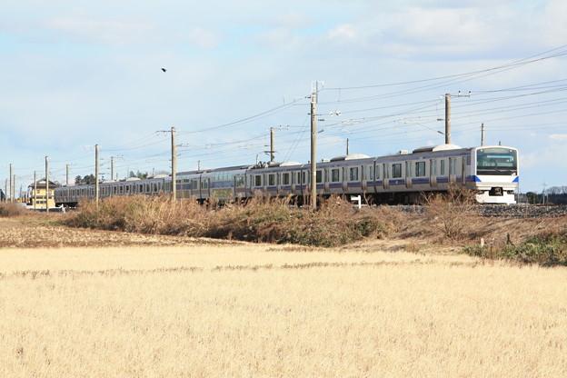 冬の田園風景を行くE531系 (3)