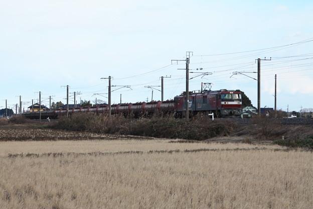 冬の田園風景を行くEH500-4牽引5094レ安中貨物 (2)