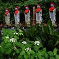 写真: 高幡不動尊のお地蔵さま