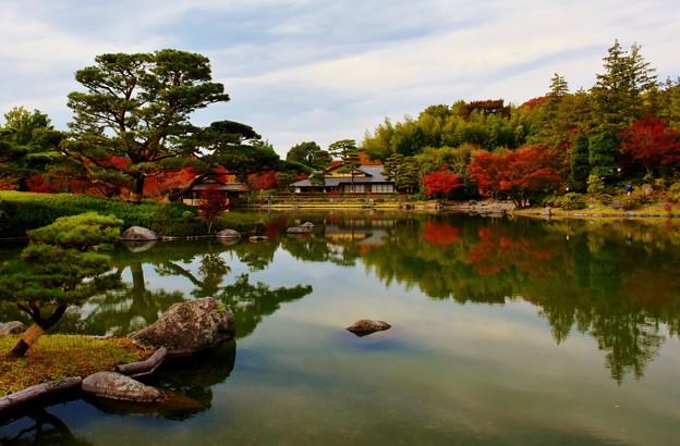 日本庭園にて