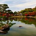 写真: 日本庭園にて