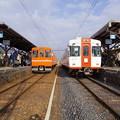 写真: IMGP1048 (2)