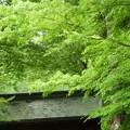 木曽 興禅寺~(^_-)-☆