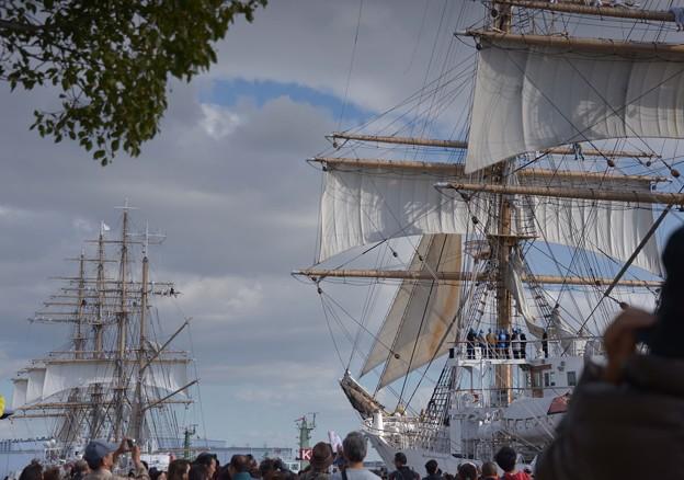 写真: 帆船のフアン多数~