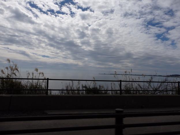 海沿いを走る