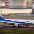 写真: 290930-羽田空港22