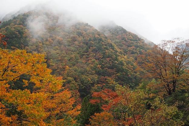 十津川渓谷