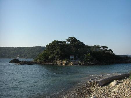 細島 震洋  (1)