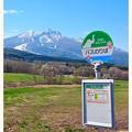 Photos: 童話の丘のバス停