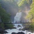初夏の苗名滝