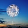 慰霊の花火「白菊」