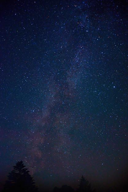 写真: 南西の空の天の川  天の川撮影会