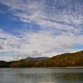 写真: 琵琶池