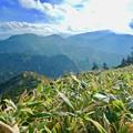 写真: 熊笹ノ峰