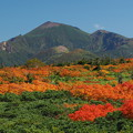 Photos: 岩手山