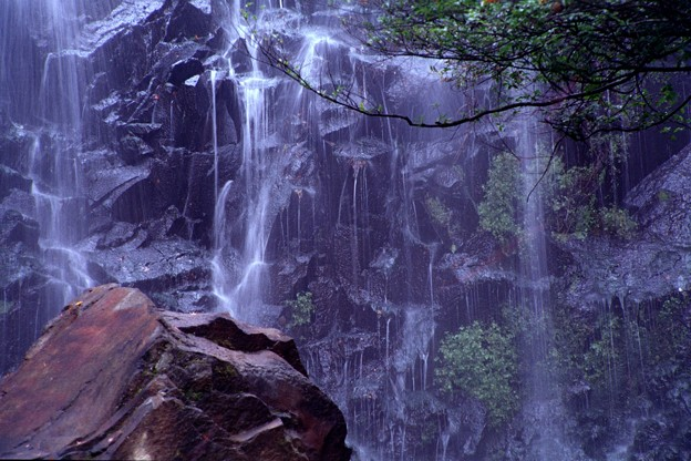 飛竜ノ滝、岩肌