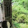 Photos: 妙音橋2