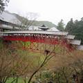 写真: 奥山方広寺の赤い橋   亀背橋