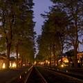 写真: lit up at night 4