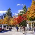写真: ターミナルのある街・秋