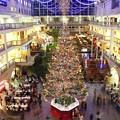 写真: big Christmas tree 3