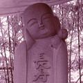 写真: ピンコロ地蔵尊_1_1