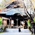 写真: 野沢成田山薬師寺にお参り_1