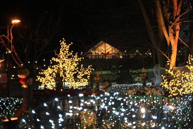軽井沢駅前の灯り