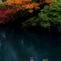 写真: 紅葉見物