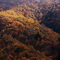 写真: 秋景7
