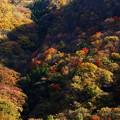 写真: 秋景9