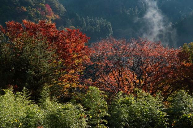 写真: 山間の朝
