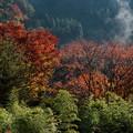 Photos: 山間の朝