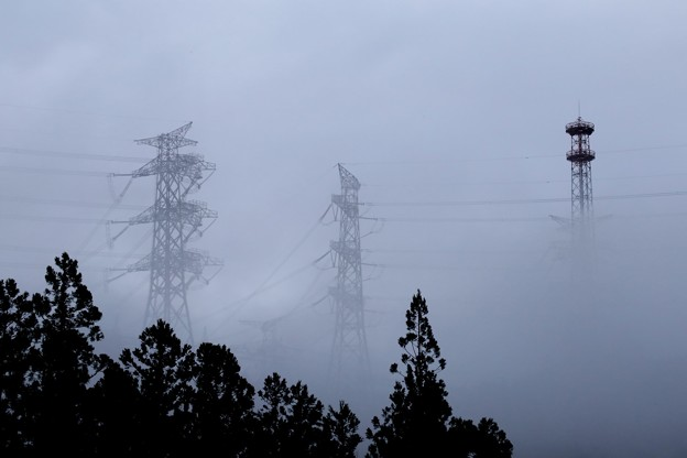 写真: 濃霧