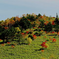 写真: 野反湖の秋1