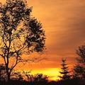 晩秋の朝焼け