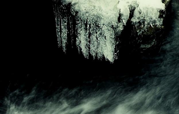 写真: 渓流の氷柱