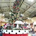 写真: 上野駅