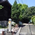 写真: 82番観福寺 RIMG2520