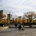 写真: 東京の紅葉