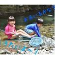 写真: 春の川遊び