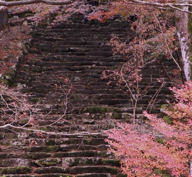 Photos: 高源寺石段