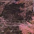 写真: 高源寺石段