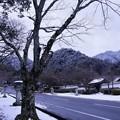 写真: 雪の坂道