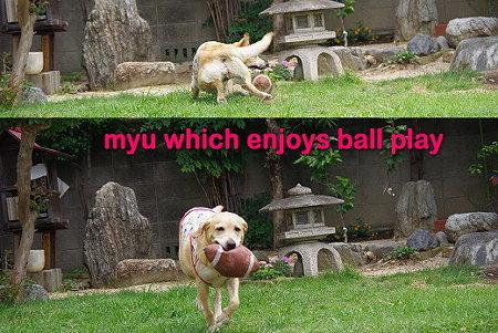 s-myu2009_0626(066)