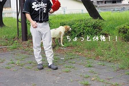 s-myu2009_0628(001)