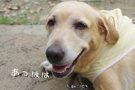 s-myu2009_0628(034)
