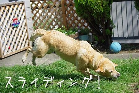 s-myu2009_0702(121)