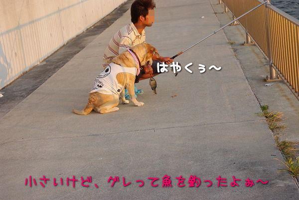 s-myu2009_0823(057)
